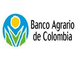 cliente metamorfosis Banco Agrario