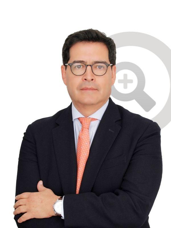 Francisco de paula sanchez polanco, consultor experto en ventas y mercadeo
